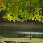 가을 빛.. by 서마사
